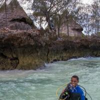 unguja lodge diving